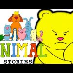Animal Stories – Polar Bear