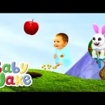 Baby Jake Bounces With Nibbles The Rabbit