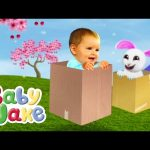 Baby Jake – Jakey Jumps and Nibbles Hops