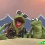 "Sesame Street: ""Caribbean Amphibian"" with Kermit"