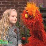 Sesame Street: Murray, Daniella, and Pets
