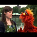 Sesame Street: Word on the Street — Vibrate