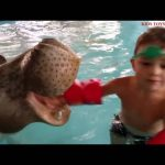 Water Park Fun For Kids. Video Compilation from KIDS TOYS CHANNEL