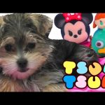 Tsum Tsum Zumi Surprise Blind Bag Toy Opening * Minnie Mouse * Frozen * Aristocats Toys DCTC