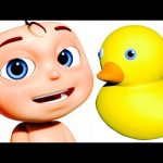 The Bath Song | Learn Body Parts For Babies | Nursery Rhymes Collection For Children