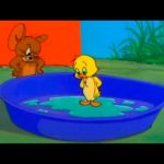 Tom and Jerry – Episode 77 – Just Ducky (1953)