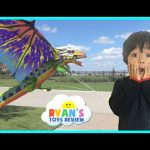 Flying Huge Dragon Kite and Superman Glider Toys For Kids Family Fun Activity Ryan ToysReview