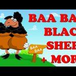 Baa Baa Black Sheep | Wheels On The Bus | Pat A Cake | Plus More | Nursery Rhyme