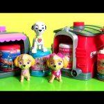 PAW PATROL Pup 2 Hero Skye & Marshall Playset Toys Surprise Mashems Fashems Toys Collection