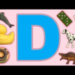 Learn-a-Word Letter of the Week! Week in Review!  The Letter D!