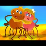 Incy Wincy Spider   From Kids TV