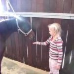 Feeding Pip Squeak Pony a Biscuit