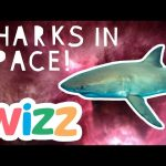 Sharks in Space For Kids