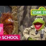 Sesame Street: Kermit Visits the First Classroom in History