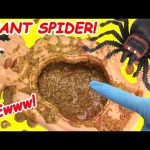 Cutting Open Mr Doh GIANT SPIDER What's Inside Mustard Belly Gross Squishies
