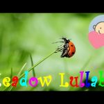 ❤ 2 HOURS ❤ Meadow LULLABY for Babies to go to Sleep | Guitar Music | Baby LULLABY songs go to sleep