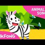 Zebra Cadabra | Zebra | Animal Songs | Pinkfong Songs for Children