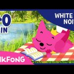 Forest Sound With PINKFONG | How To Sleep Better | White Noise | PINKFONG Songs for Children