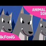 Night Animals   Animal Songs   PINKFONG Songs for Children