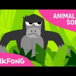 Jungle Boogie   Animal Songs   PINKFONG Songs for Children
