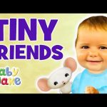 Baby Jake – Tiny Friends | Full Episode | Cartoons for Kids