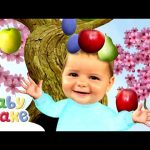 Baby Jake – Autumn Leaves | Full Episodes | Yaki Yaki Yogi | Cartoons for Kids