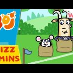 Boj – Sports Day! | Wizz | Cartoons for Kids