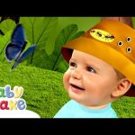 Baby Jake – Butterfly Adventures | Full Episodes | Yaki Yaki Yogi | Cartoons for Kids
