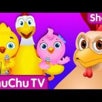 Chicken Daddy saves his little chicks from Bad Guys | ChuChu TV Surprise Eggs Funny Cartoon Shows