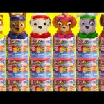 Paw Patrol All Star Mashems Learn Colors, Counting, and Sorting