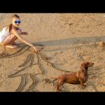 Kids playing on the beach. Funny video with Bogdy and Alexandra