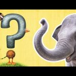 What Is It? | ANIMAL GUESSING GAME | Mother Goose Club Back to School
